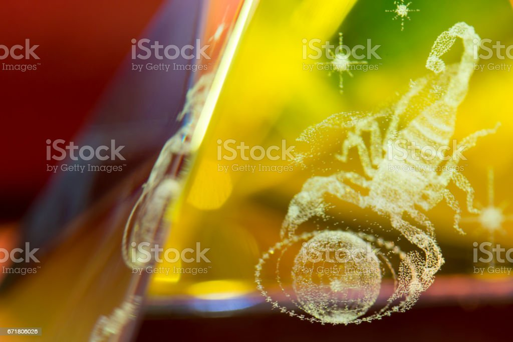Scorpion in prism stock photo