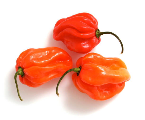 Scotch bonnet peppers Scotch bonnet peppers isolated on white. bonnet stock pictures, royalty-free photos & images
