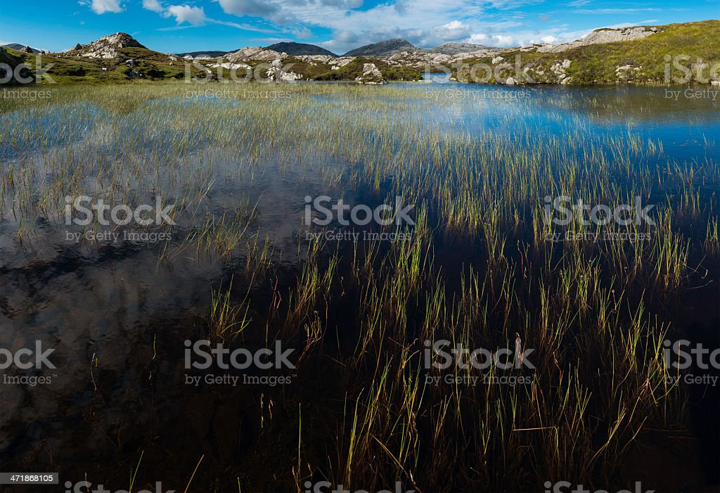 Scotland summer reeds in clear mountain loch Western Isles Hebrides royalty-free stock photo