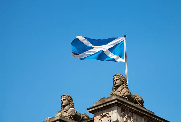 schottische flagge - schottische kultur stock-fotos und bilder