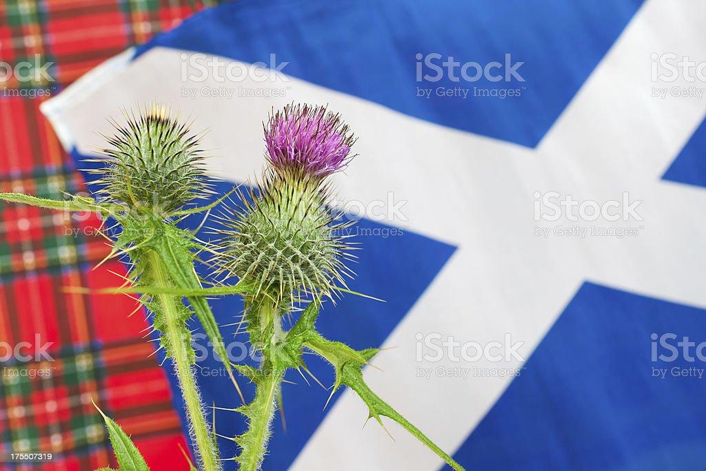 Scottish iconography royalty-free stock photo
