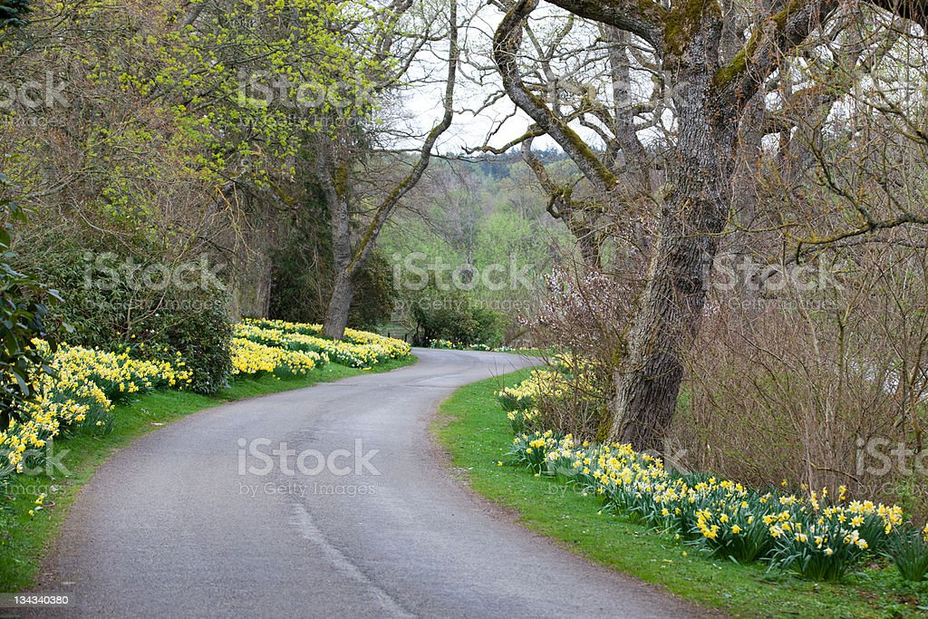 Scottish Road royalty-free stock photo