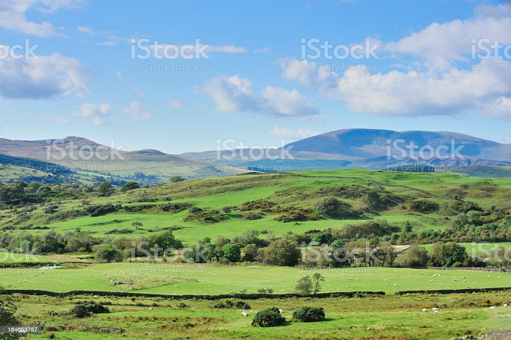 Scottish rural scene of woodland, fields and hills. stock photo
