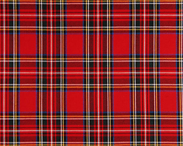 Scottish tissue Scottish tissue - red and blue plaid stock pictures, royalty-free photos & images
