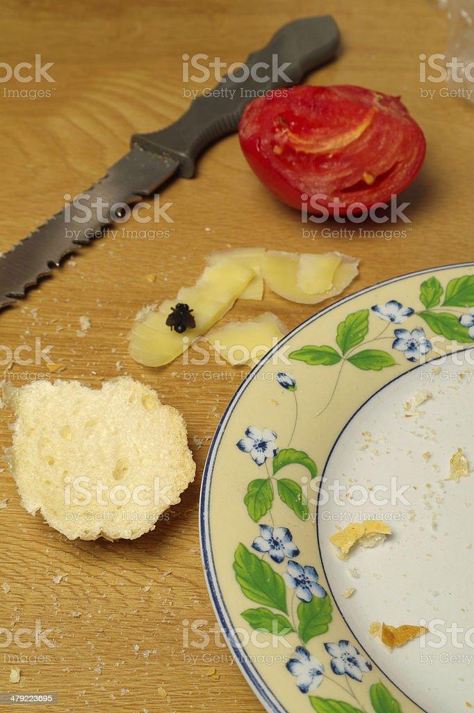 scrap food royalty-free stock photo