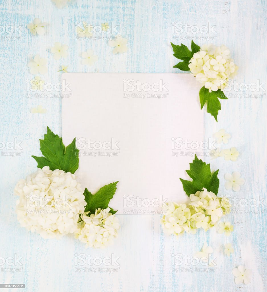 Scrapbooking page with white flowers stock photo