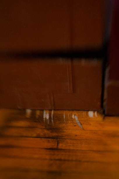 Scratched Wood Floor Where The Door Scraped Stock Photo