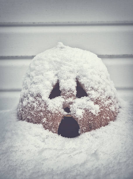 Screaming Jack O Lantern Covered in Snow stock photo