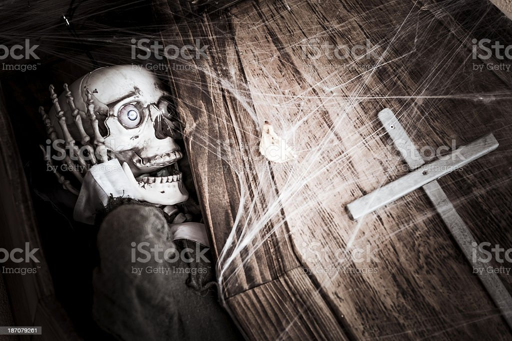 Screaming Skeleton Skull Halloween in a Coffin stock photo