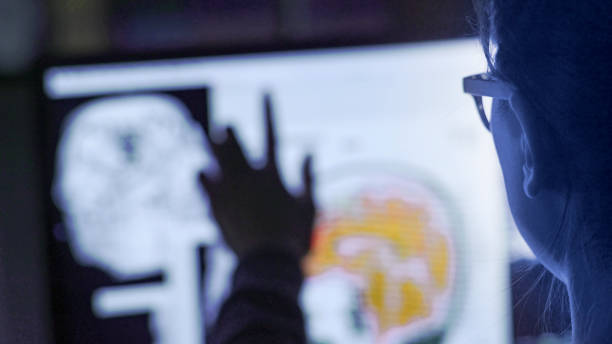 Screen physiology POV Close up image of a young asian woman using a large touch screen to look through healthcare images & moving images. This is shot over her shoulder and is near POV. neuroscience stock pictures, royalty-free photos & images
