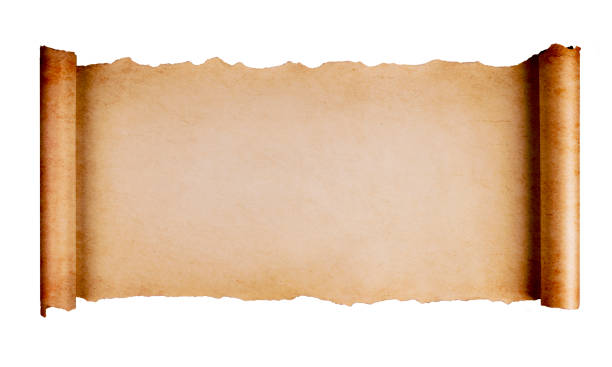 Scroll Paper Isolated Vintage blank paper scroll isolated on white background with copy space. papyrus paper stock pictures, royalty-free photos & images