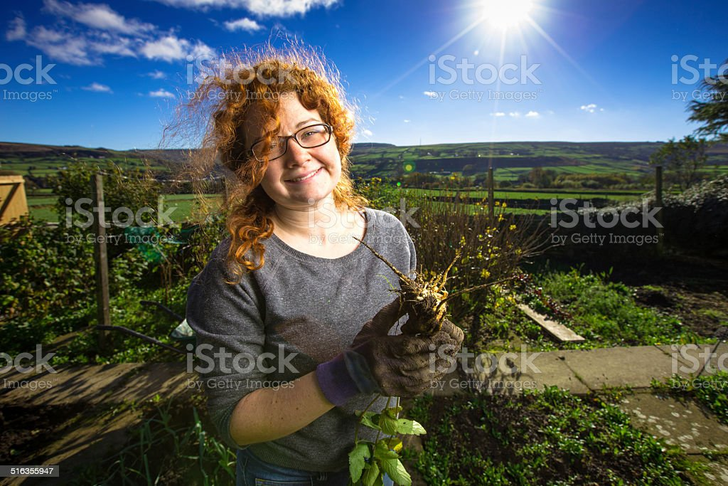 Scruffy Girl Pulling Up Vegetables stock photo