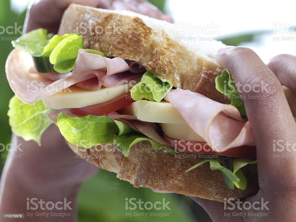 Scrumptiuos Sandwich royalty-free stock photo