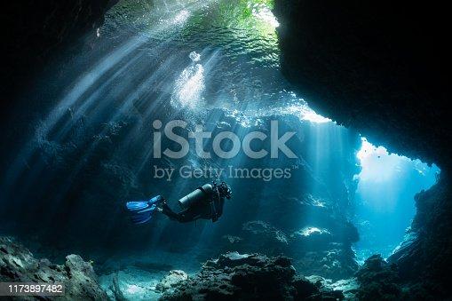 istock Scuba Diver in Shallow Lagoon 1173897482