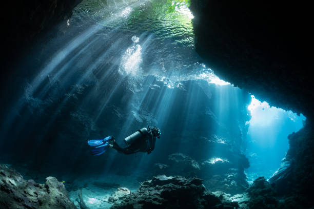 Scuba Diver in Shallow Lagoon Beautiful light beams through the jungle canopy then into this cavern system. south pacific ocean stock pictures, royalty-free photos & images