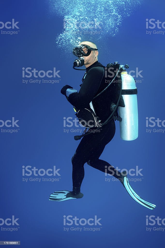 Scuba diver in the sea stock photo