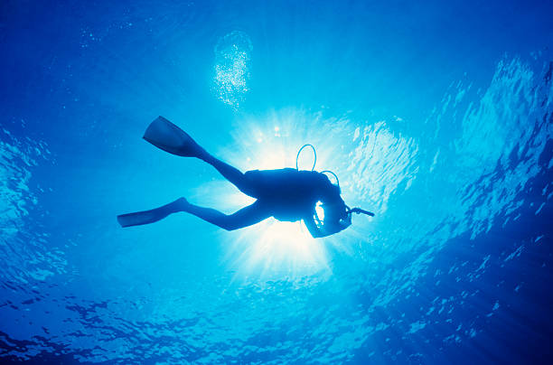 Taucher im Wasser mit Sonne oben – Foto