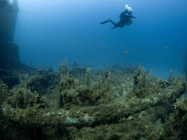 scuba diver investingating a shipwreck stock photo