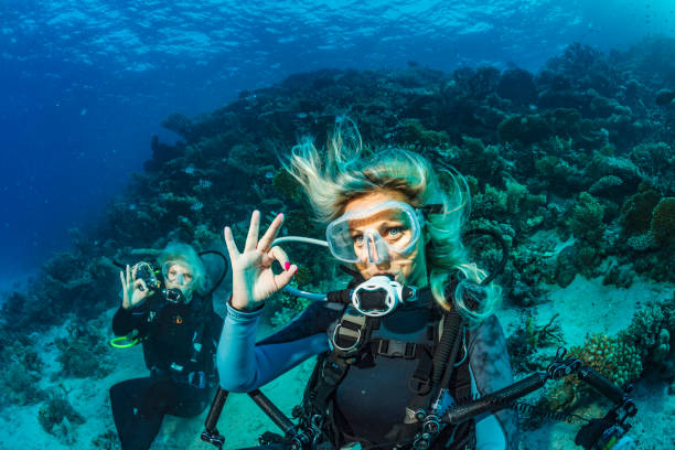 scuba diver is exploring and enjoying coral reef  sea life couple two sporting women underwater photographer - underwater diving stock photos and pictures