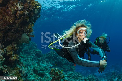 Scuba diver is exploring and enjoying Coral reef  Sea life  Sporting Two blond Sporting women Underwater photo