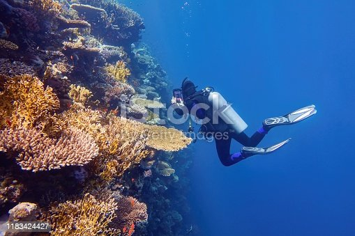 Scuba diver near the coral wall photographing colorful coral reef