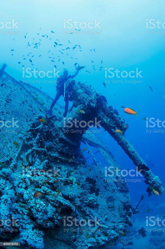 Nurkowanie we wrakach diver punktu widzenia nurkowania Wrak statku SS Thistlegorm zbiór zdjęć royalty-free