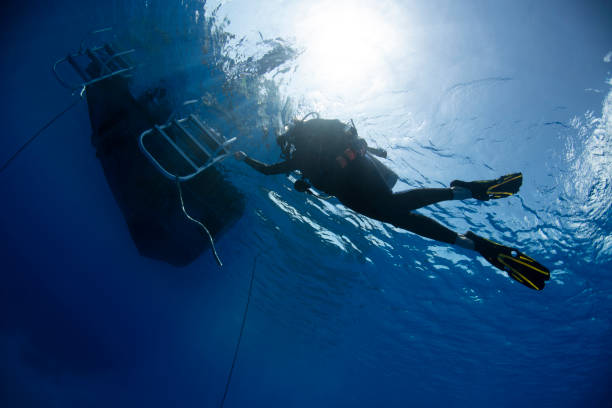 Scuba diver returning to the boat stock photo