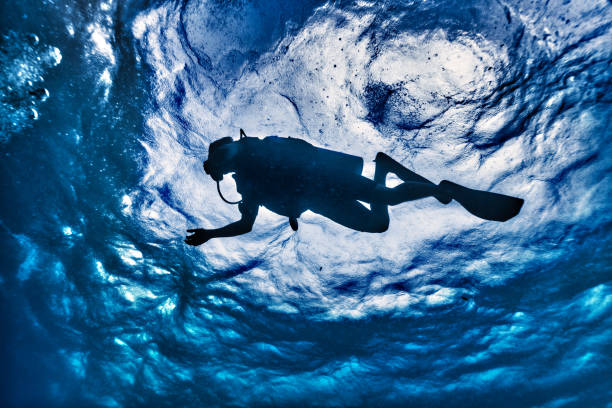 Scuba Diver Silhouette underwater low angle view stock photo