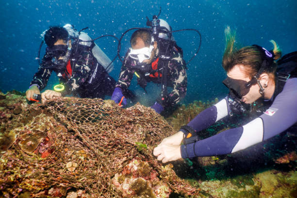Scuba diver volunteers on underwater environmental cleanup of Ghost Net fishing gear stock photo