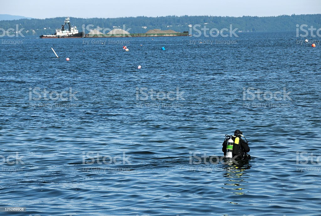 Scuba diver wading into Puget Sound at Edmonds WA royalty-free stock photo