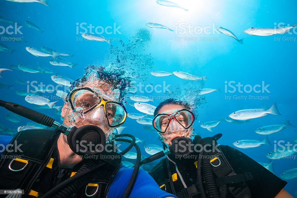 Scuba divers looking at camera underwater stock photo