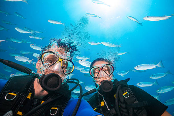 Scuba divers looking at camera underwater - Photo