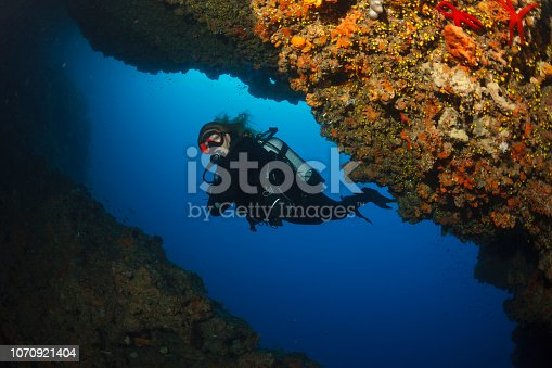 Scuba diving Exploring and enjoying   Sea life  Sporting women long blonde hair  Water sports  Scuba diver point of view