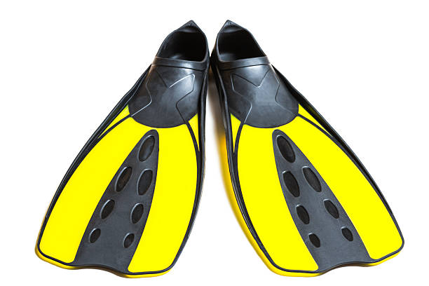 Scuba diving fins, flippers, isolated on white background Scuba diving fins, flippers, isolated on white background. diving flipper stock pictures, royalty-free photos & images