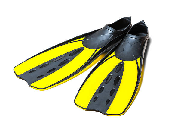 Scuba diving fins, flippers Scuba diving fins, flippers, clipping path, isolated on white background. diving flipper stock pictures, royalty-free photos & images