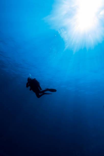 澄んだ青い水でスキューバ ダイビング ストックフォト