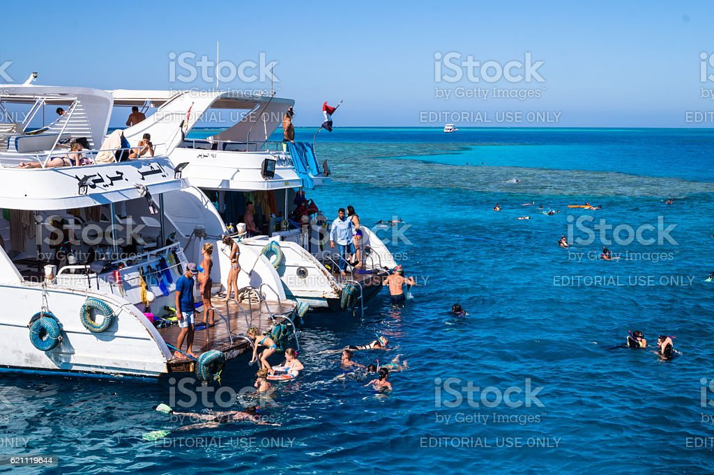 Scuba diving in the Red Sea. Holiday in Egypt stock photo