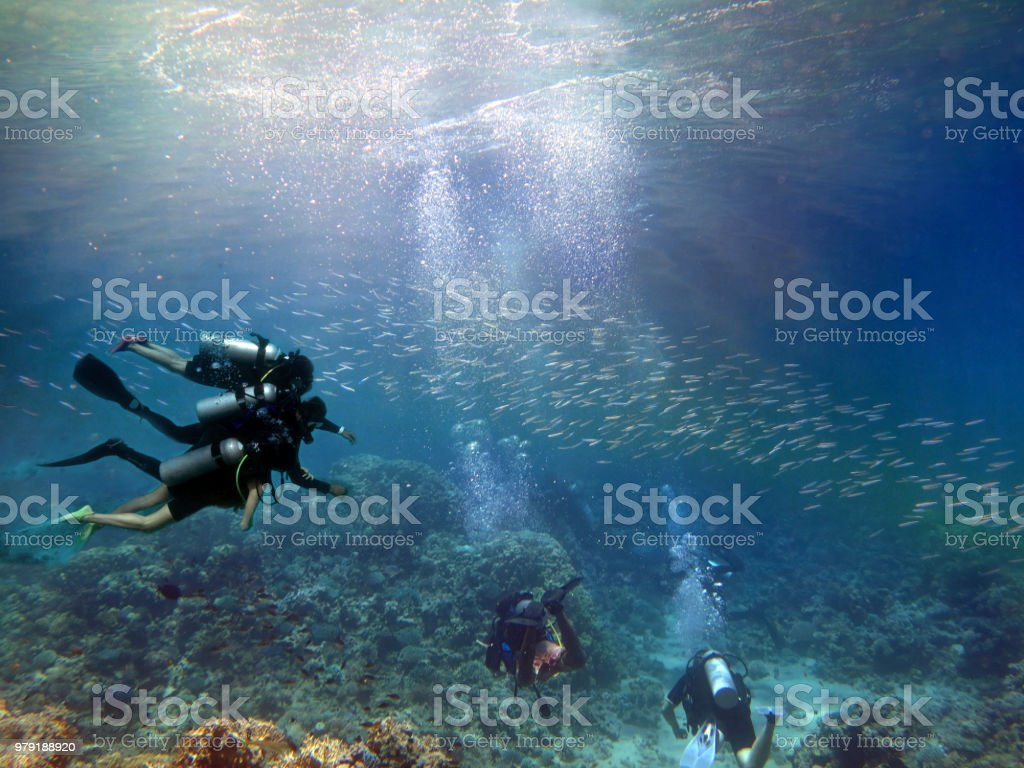 Scuba diving on coral reef underwater with rays light background. stock photo