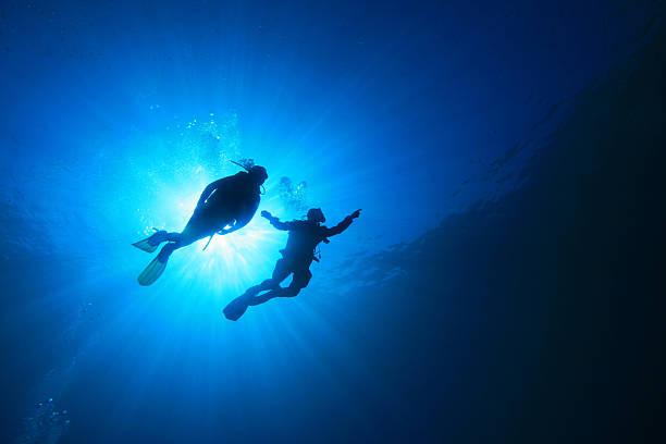 La plongée sous-marine - Photo