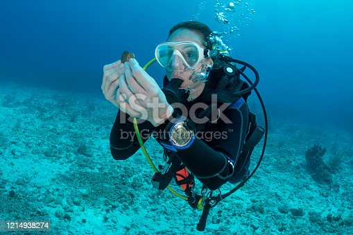 View of a woman scuba diving holding antique coins in Grand Cayman - Cayman Islands