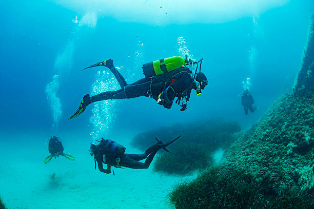 Scuba diving    Underwater Group of scuba divers in blue stock photo