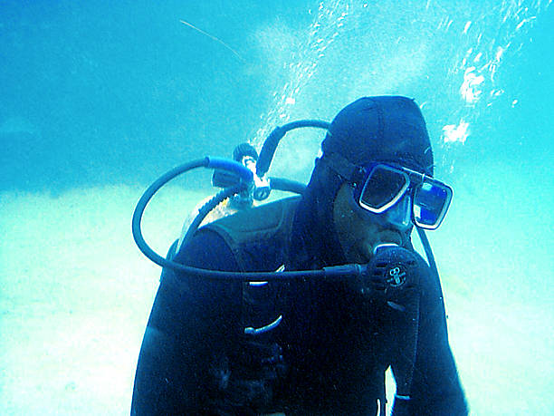 Scuba-Doo stock photo