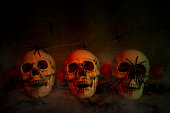 scull and spiders as halloween decoration