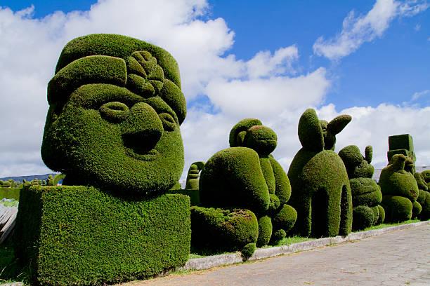 sculptée de tulcan arbres art topiaire, équateur - buis photos et images de collection
