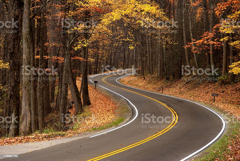 S-curve in Roadway royalty-free stock photo