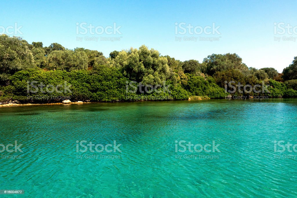Sea and forest in Greece stock photo