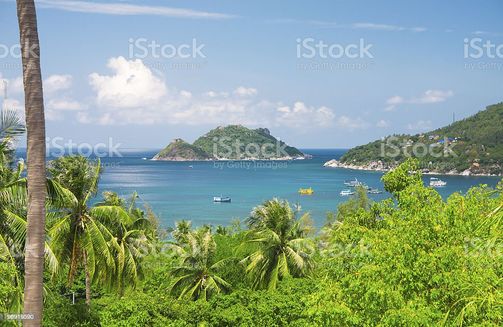 sea and jungle. beautiful ko tao island. Thailand royalty-free stock photo