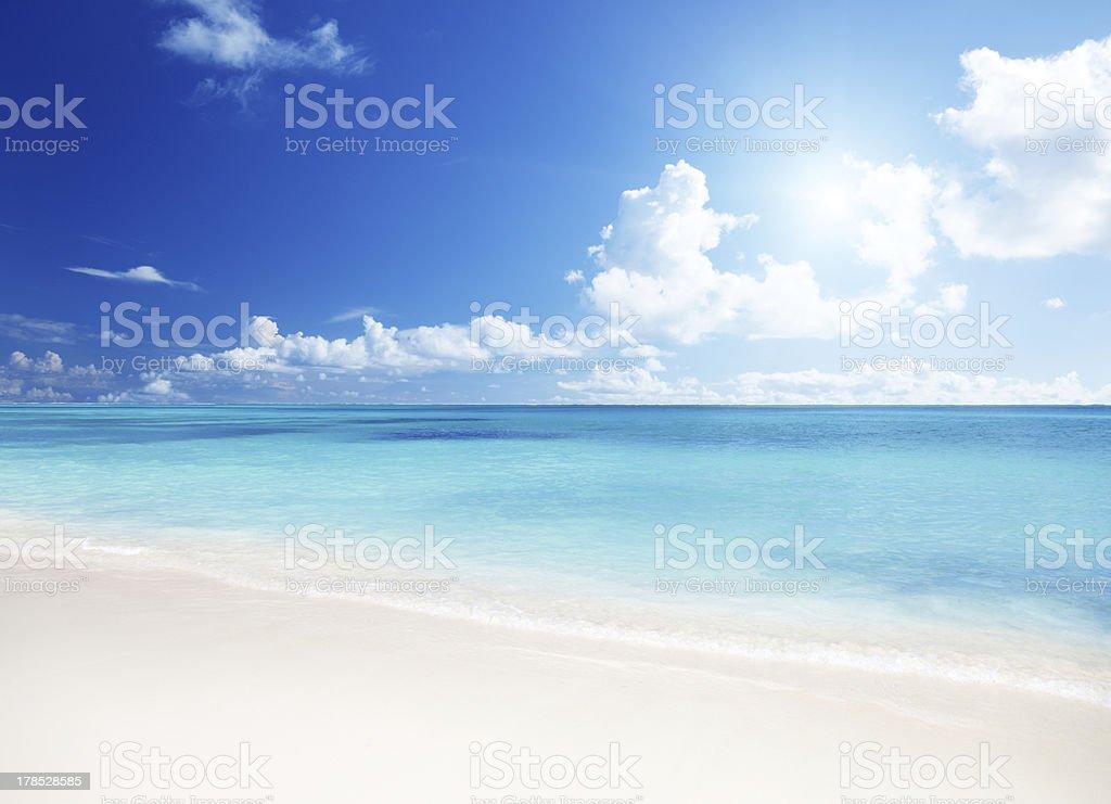 sea and sand bildbanksfoto