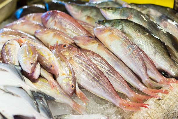 Wolfsbarsch und Brasse frischen Fisch im the market – Foto