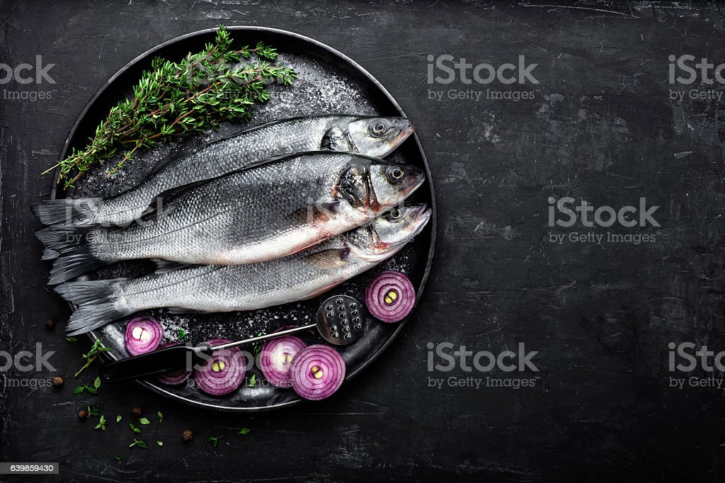 sea bass fish stock photo